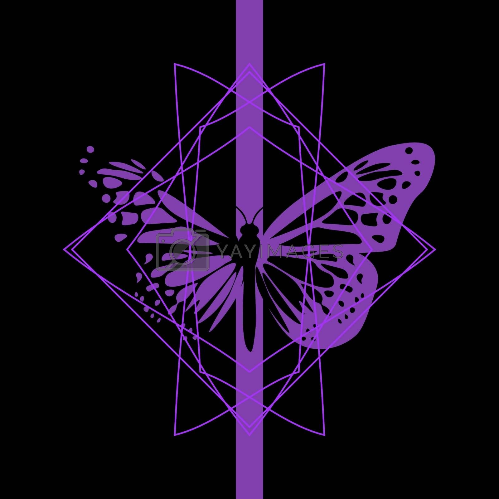 beautiful dark purple butterfly in geometric frame on black background