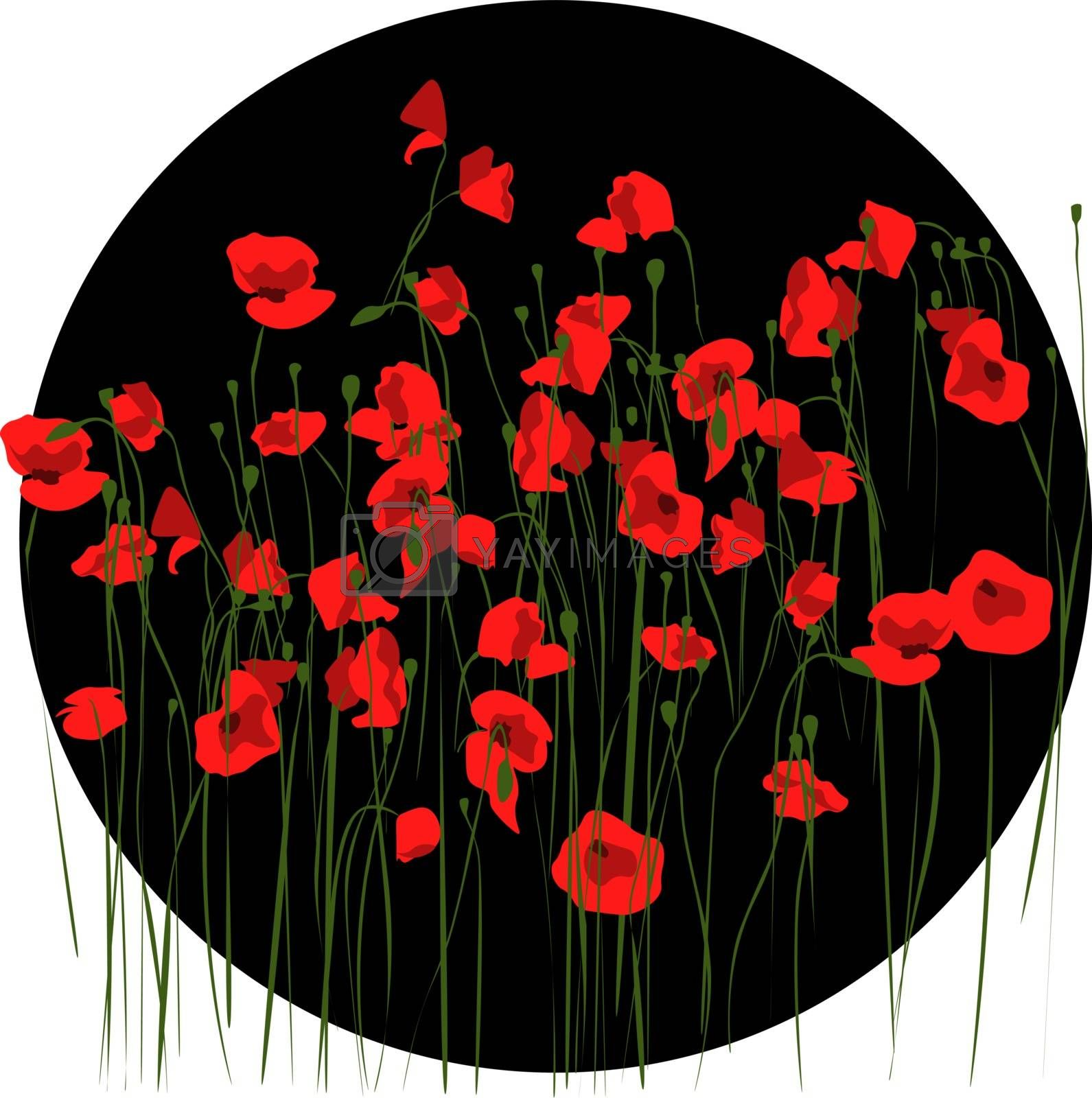 elegant dark illustration of black circle with red poppy flowers
