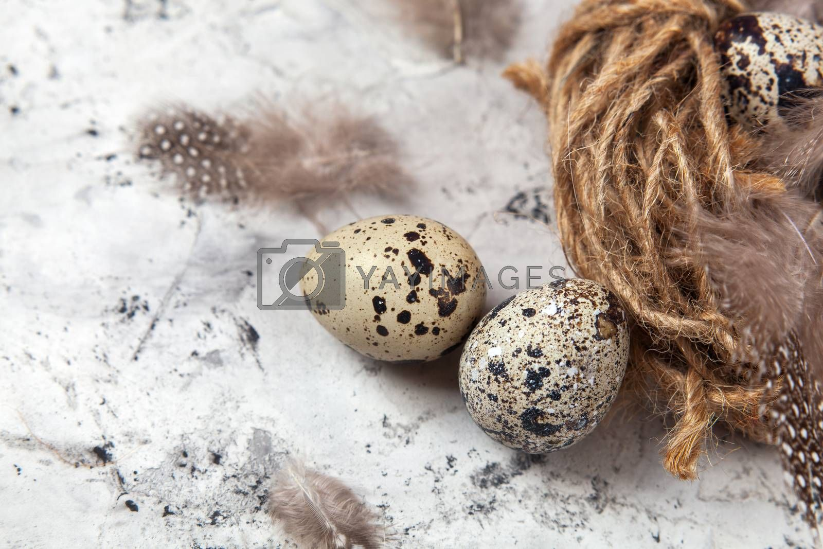 Easter quail eggs in nest on bright background by Polina Tuliakova
