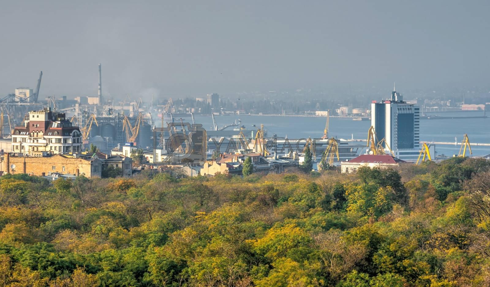 Odessa, Ukraine 03.08.2020. Top view of Shevchenko Park in Odessa, Ukraine, on a sunny spring day