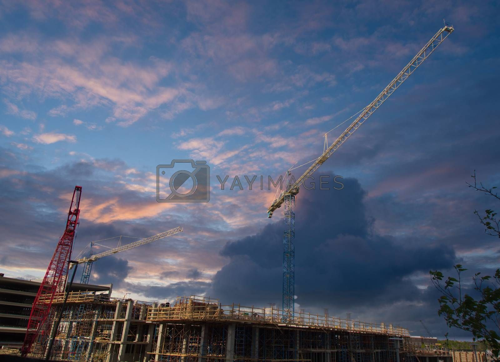 White and Red Construction Cranes
