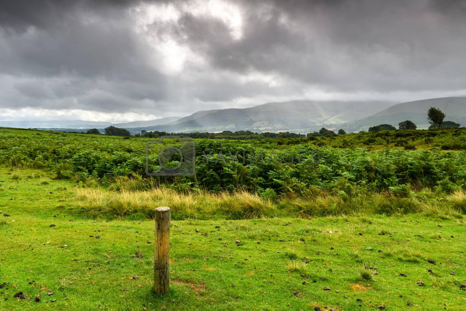 Brecon Beacons National Park Landscape