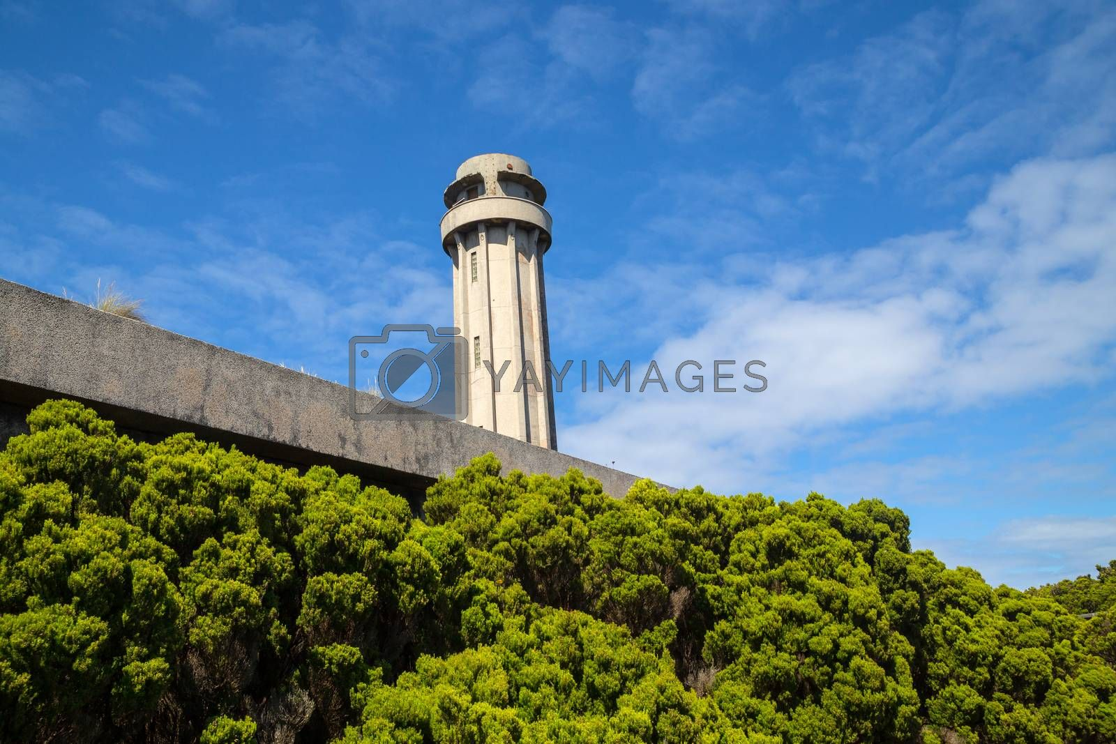 Natural heather forest and old lighthouse landscape in Sao Jorge. Azores. Portugal
