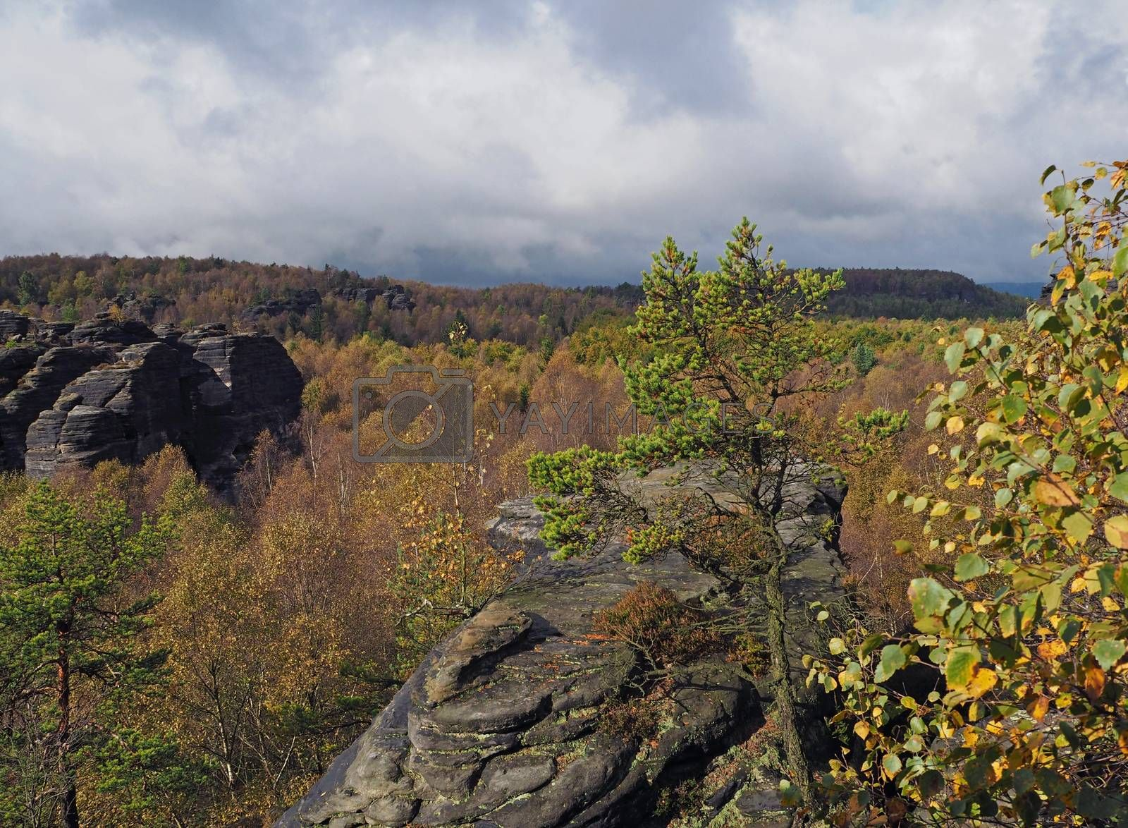 Autumn landscape in czech Switzerland national park with sandstone slopes and forest