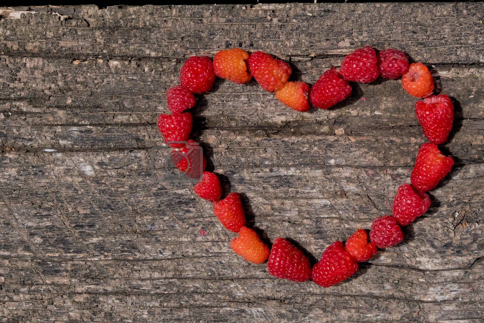 Heart made of ripe aromatic raspberrie on a wooden background. by leonik