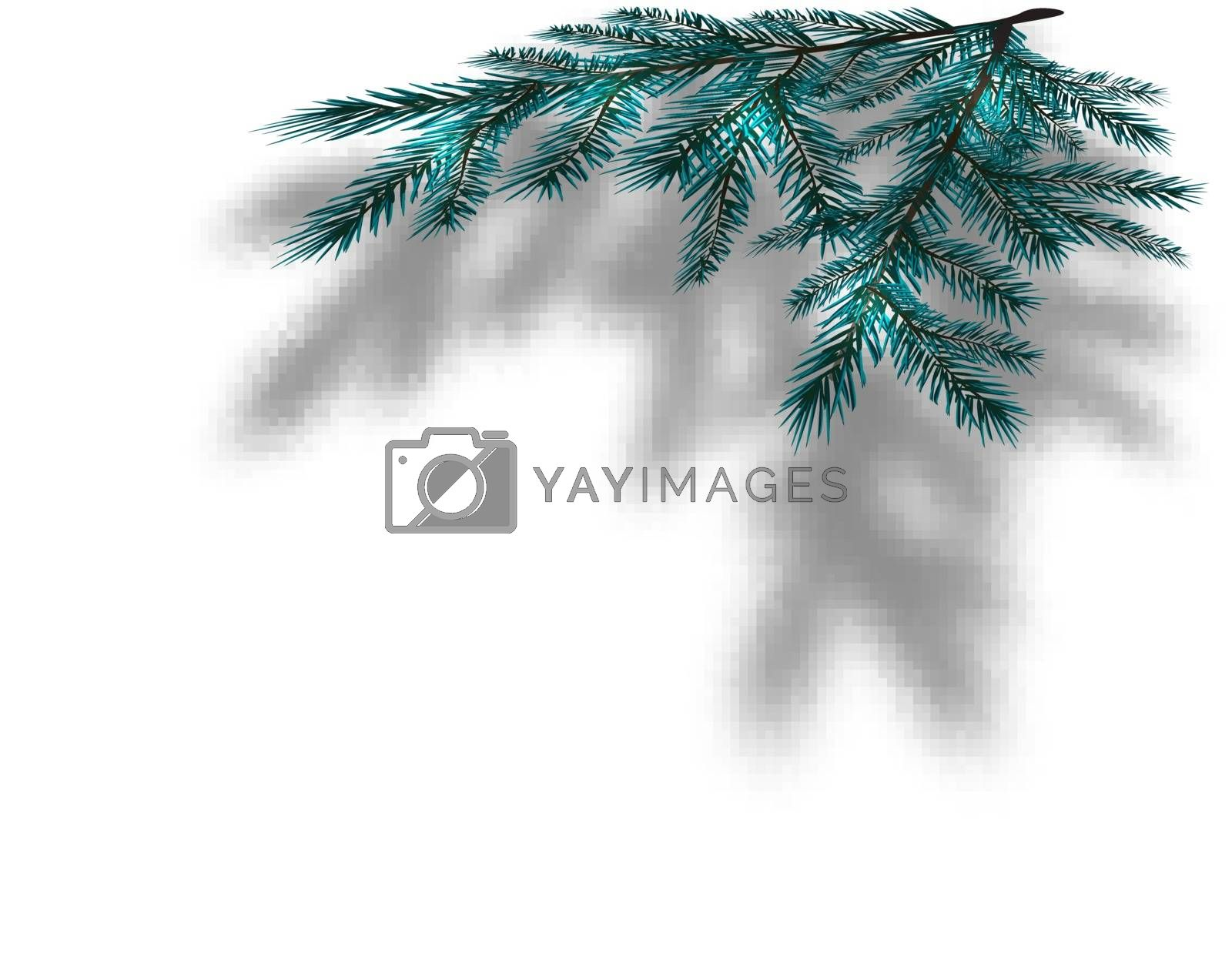 Blue Christmas tree branches on an isolated white background with the shadow in perspective. Vector illustration