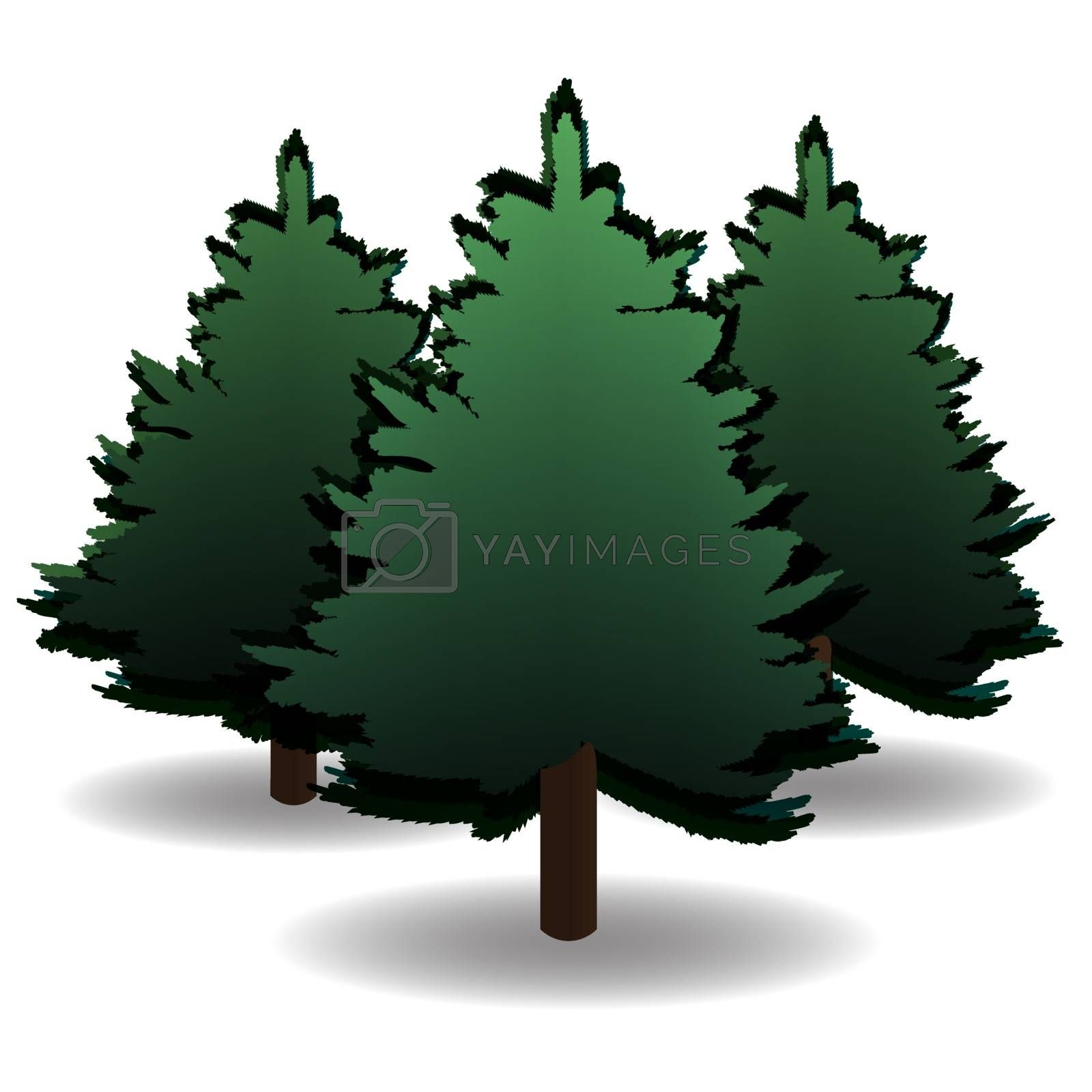 Three green spruce and their shadows for advertising and announcements. Christmas symbol. New Year. On a white background isolated. Vector illustration