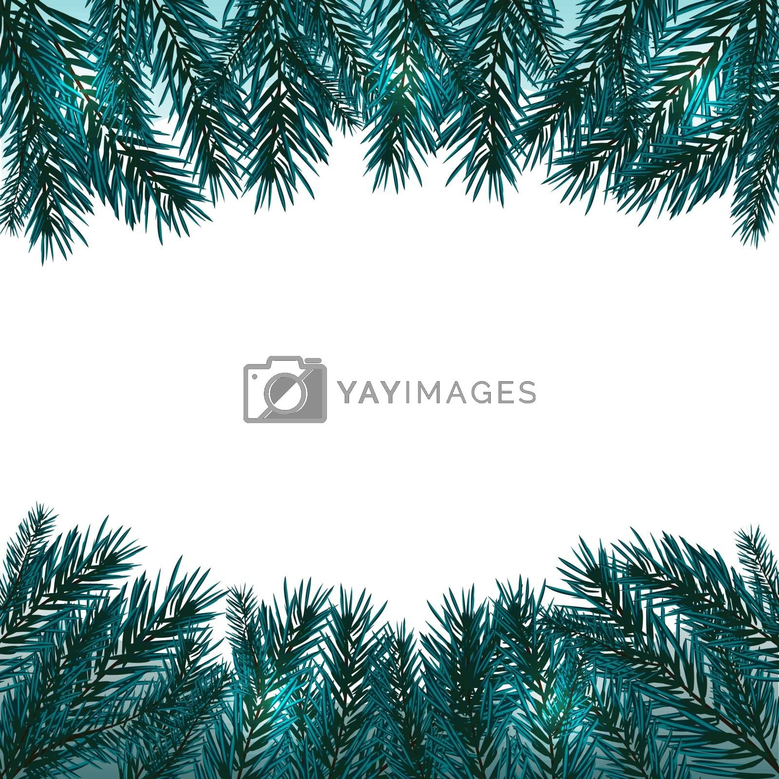 Blue, realistic fir branches. Fir branches with the top and bottom of the picture. Isolated on white background. Christmas vector illustration