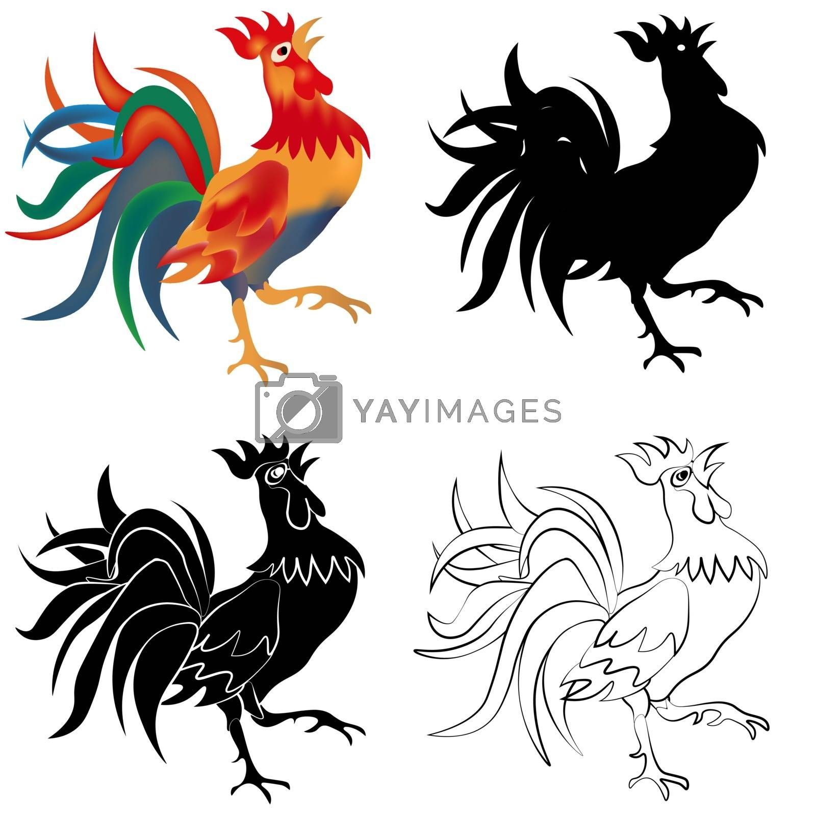 Set of four black, white and colored roosters isolated on white background. 2017 fiery red rooster. vector illustration