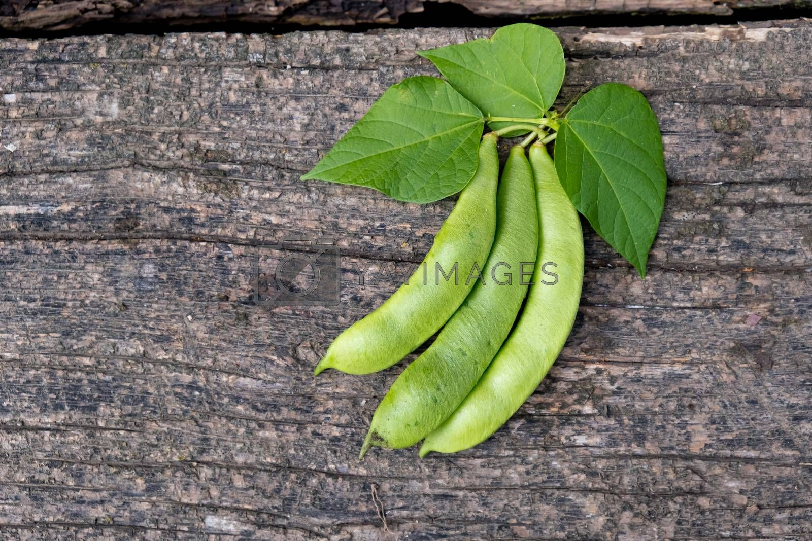 Raw green beans on wood background. Closeup.