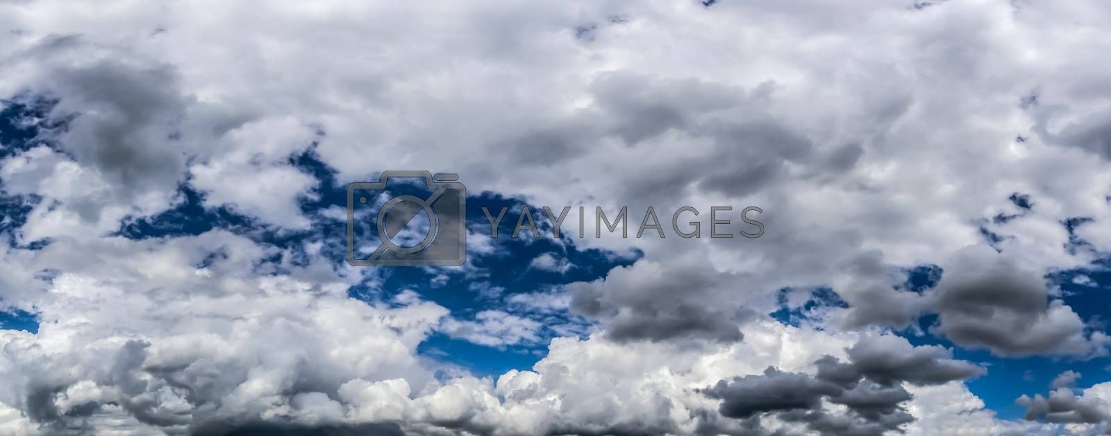 Beautiful fluffy white cloud formations in a deep blue summer sk by MP_foto71