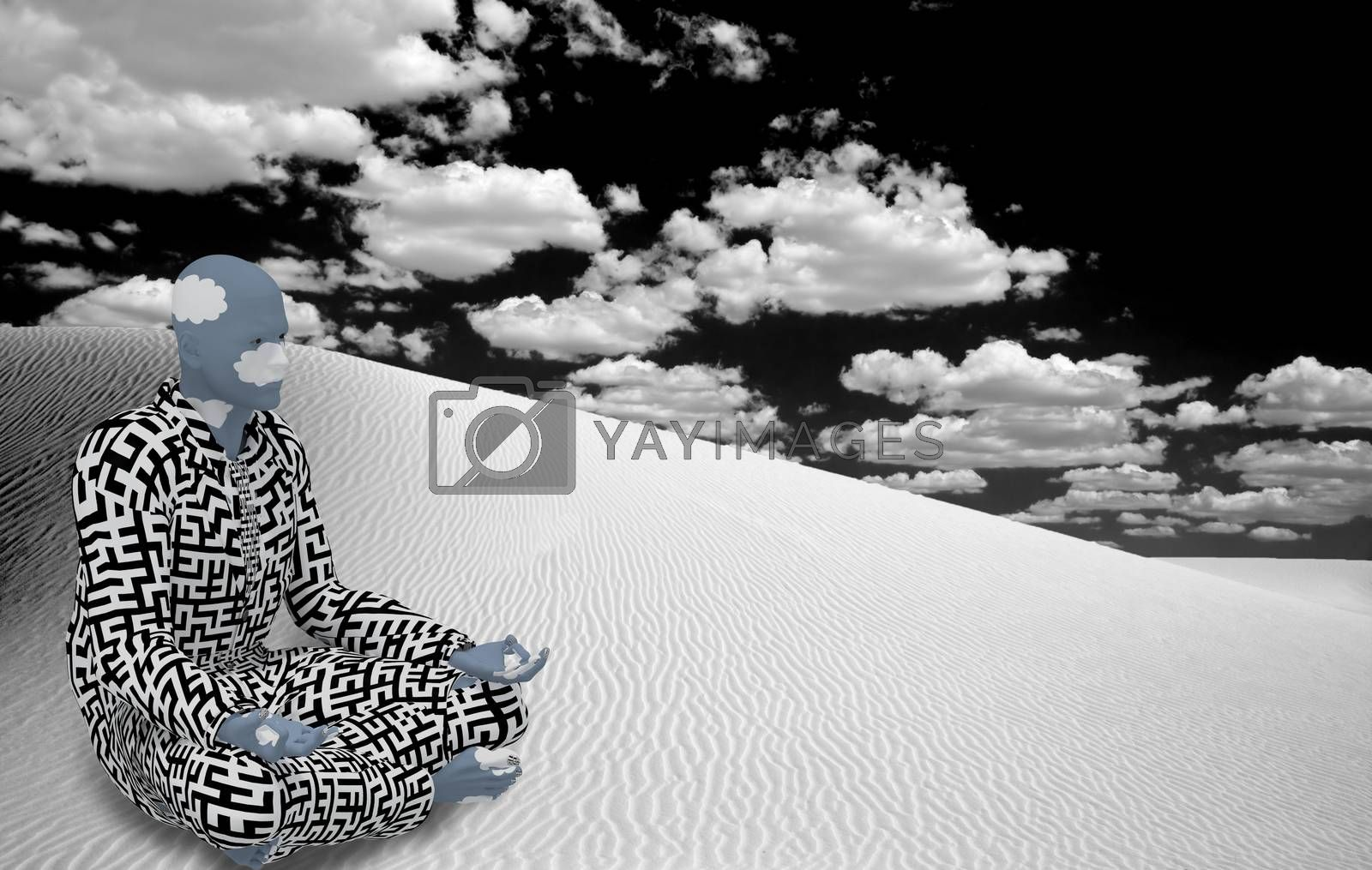 White Desert Zen by applesstock