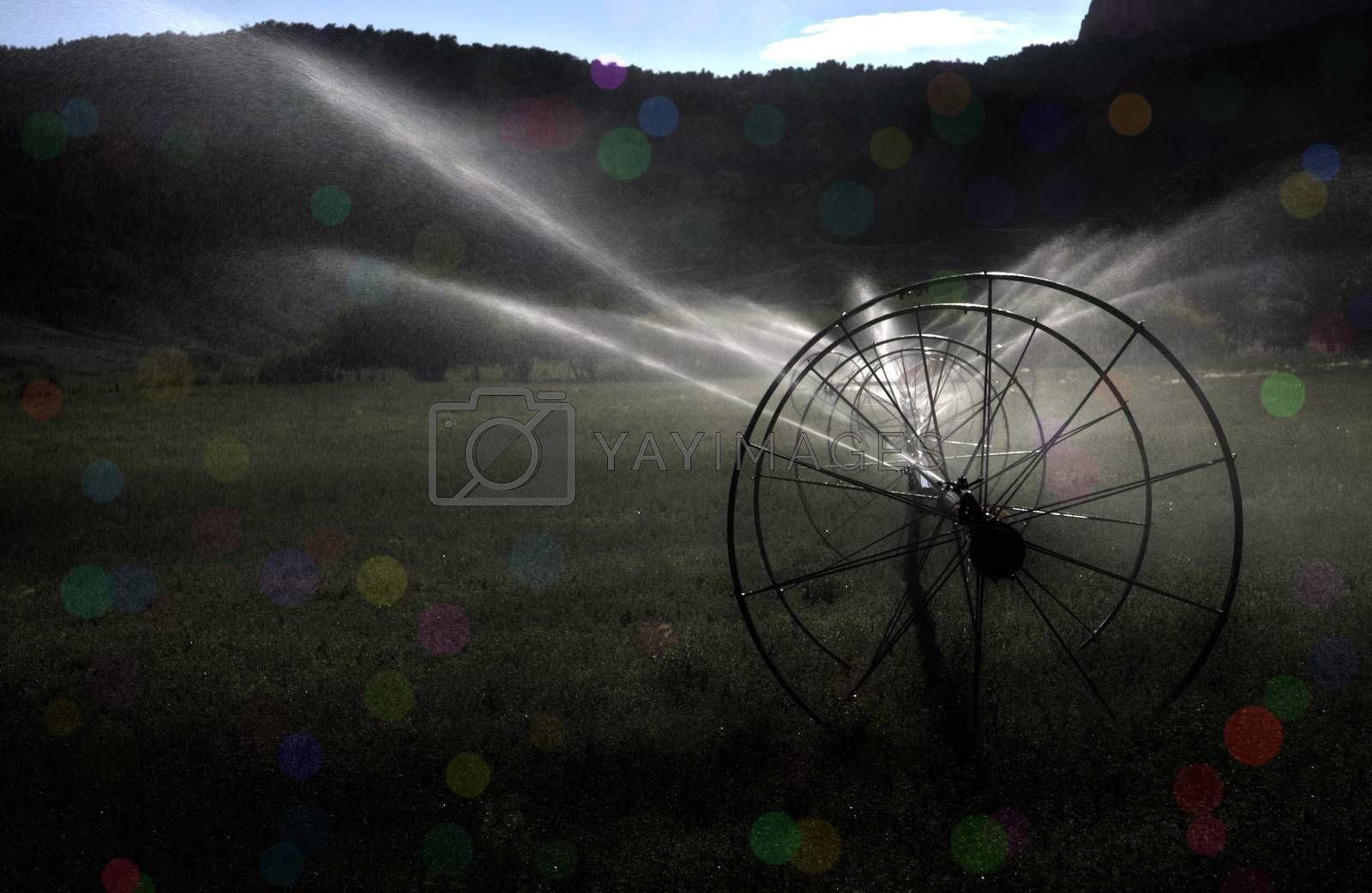 Irrigation by applesstock