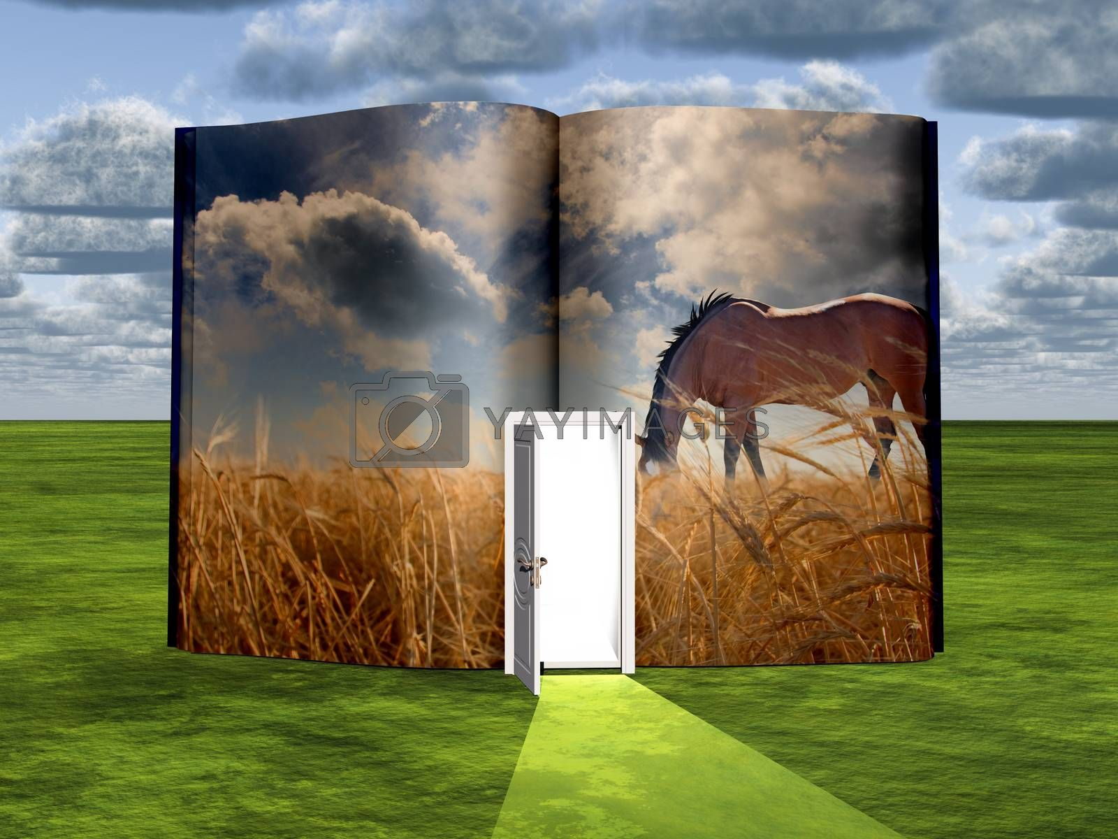 Opened book with Horse by applesstock