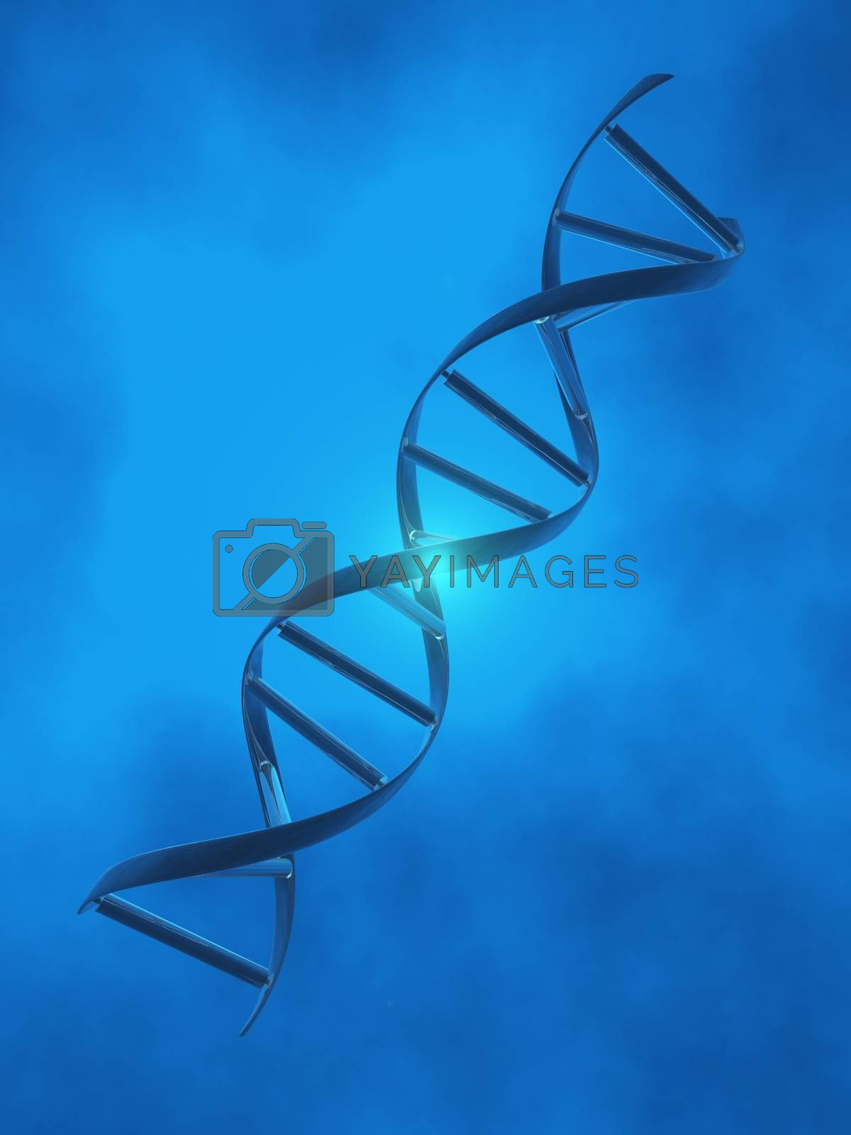 DNA Strand by applesstock