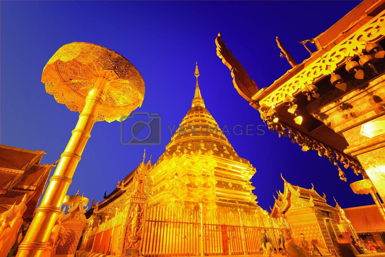Night view of Wat Phra That Doi Suthep, Chiang Mai, Popular hist by Surasak