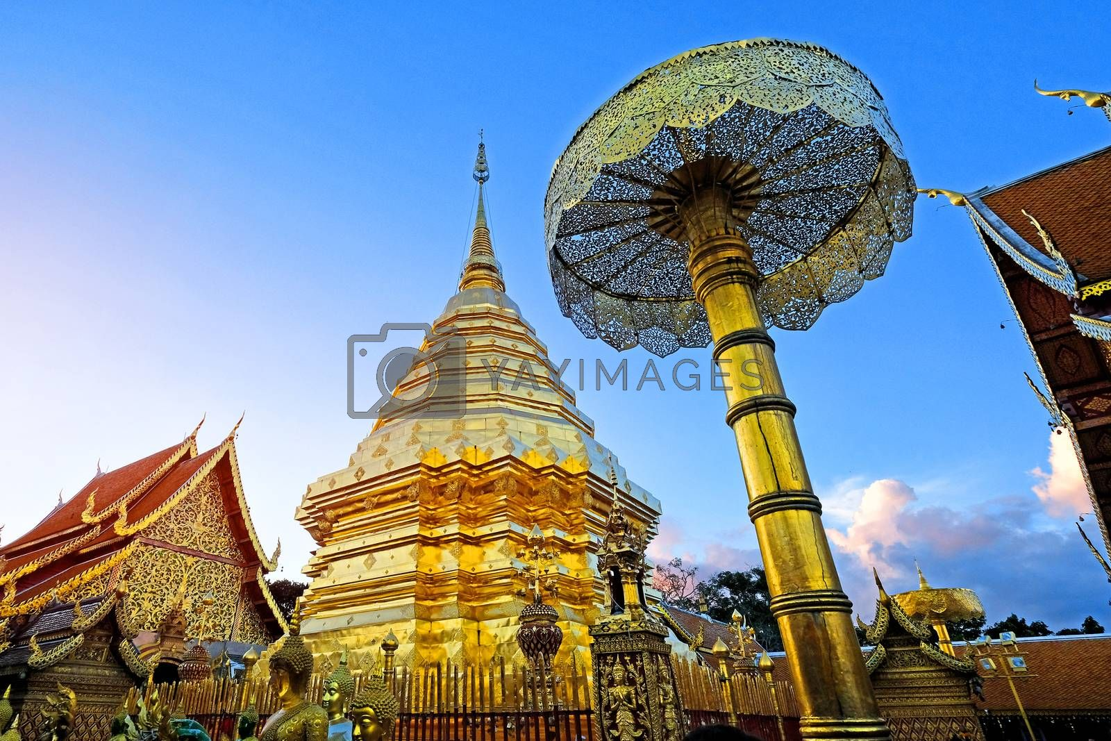 Sunset view of Wat Phra That Doi Suthep, Chiang Mai, Popular historical temple in Thailand.