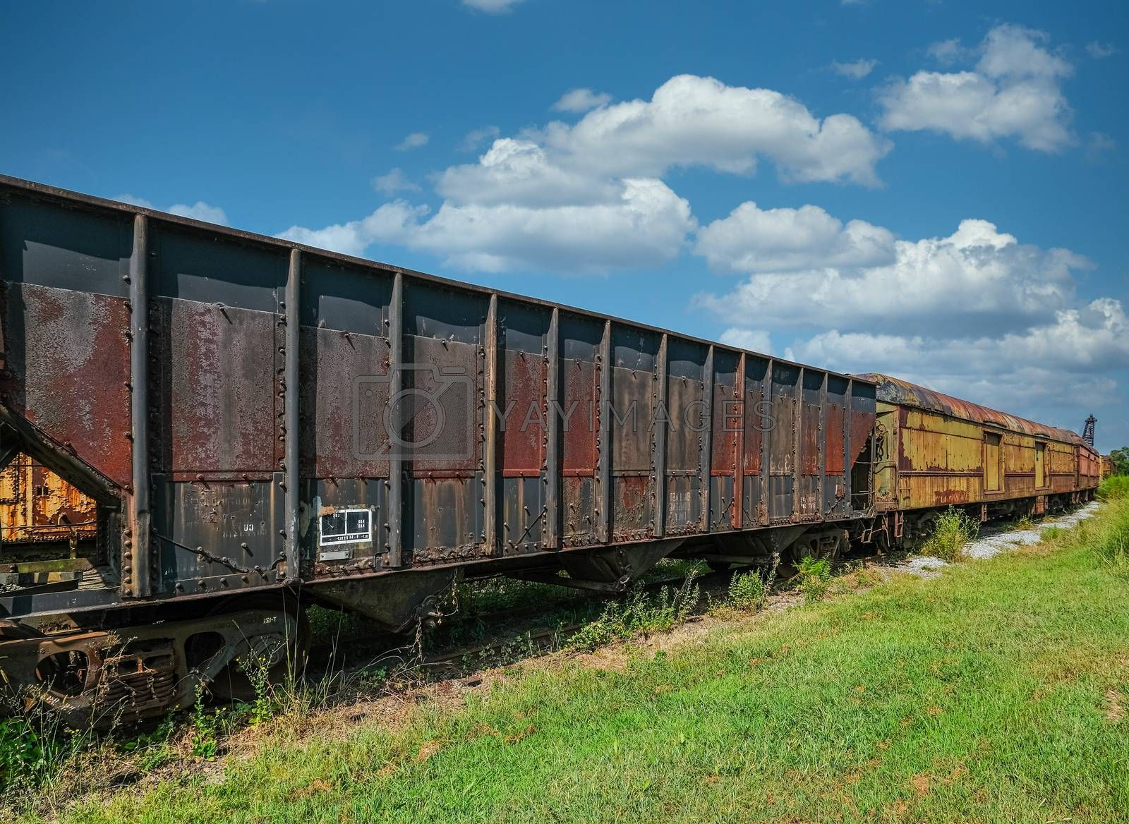 Rusty Train Cars on Track in a Grassy Field