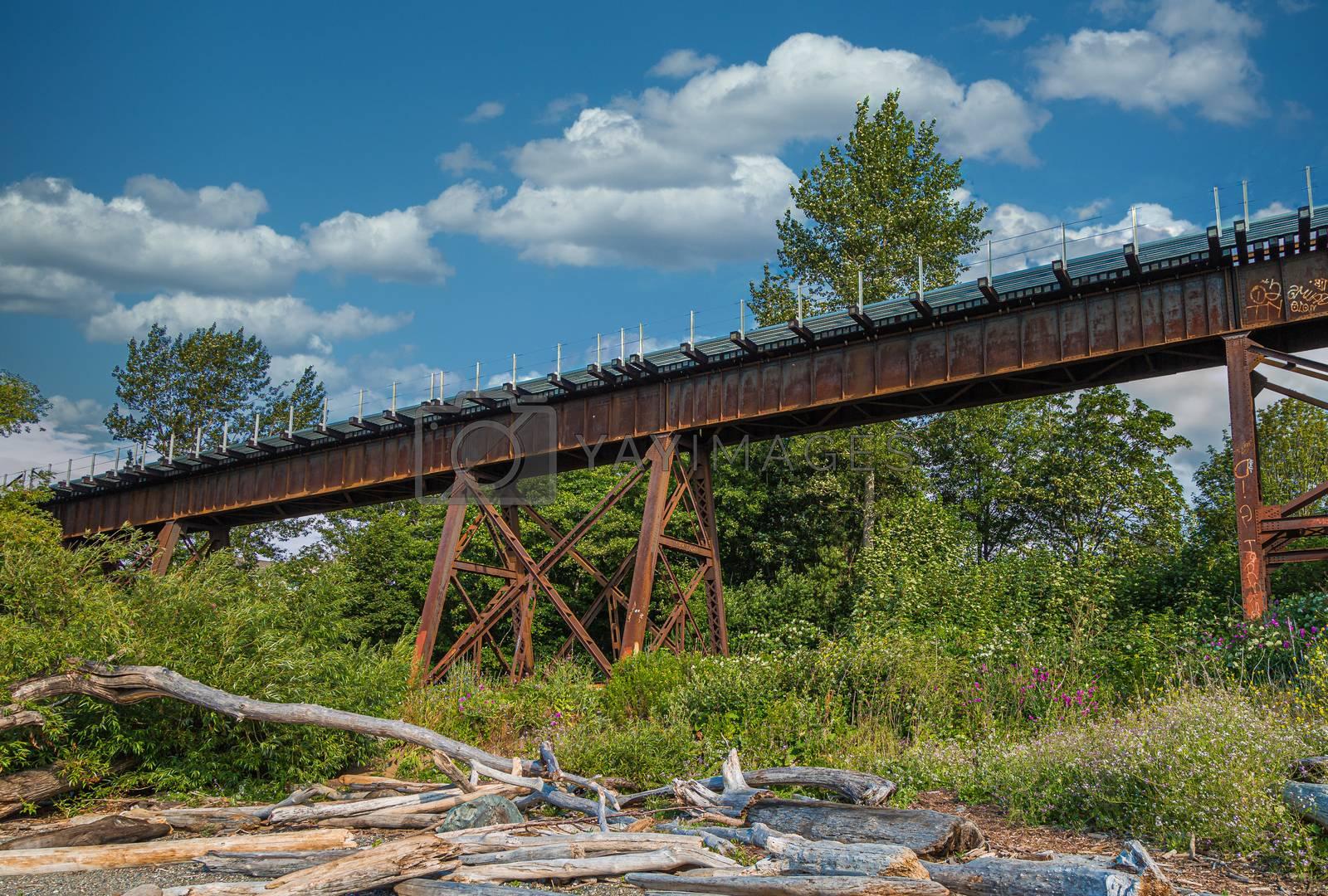 Old Rusty Trestle Bridge on the Coast of Washington, State