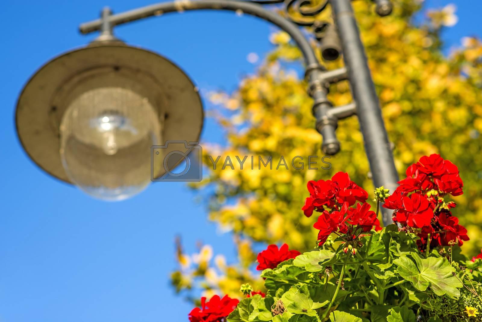 street lantern with red flowers by Jochen