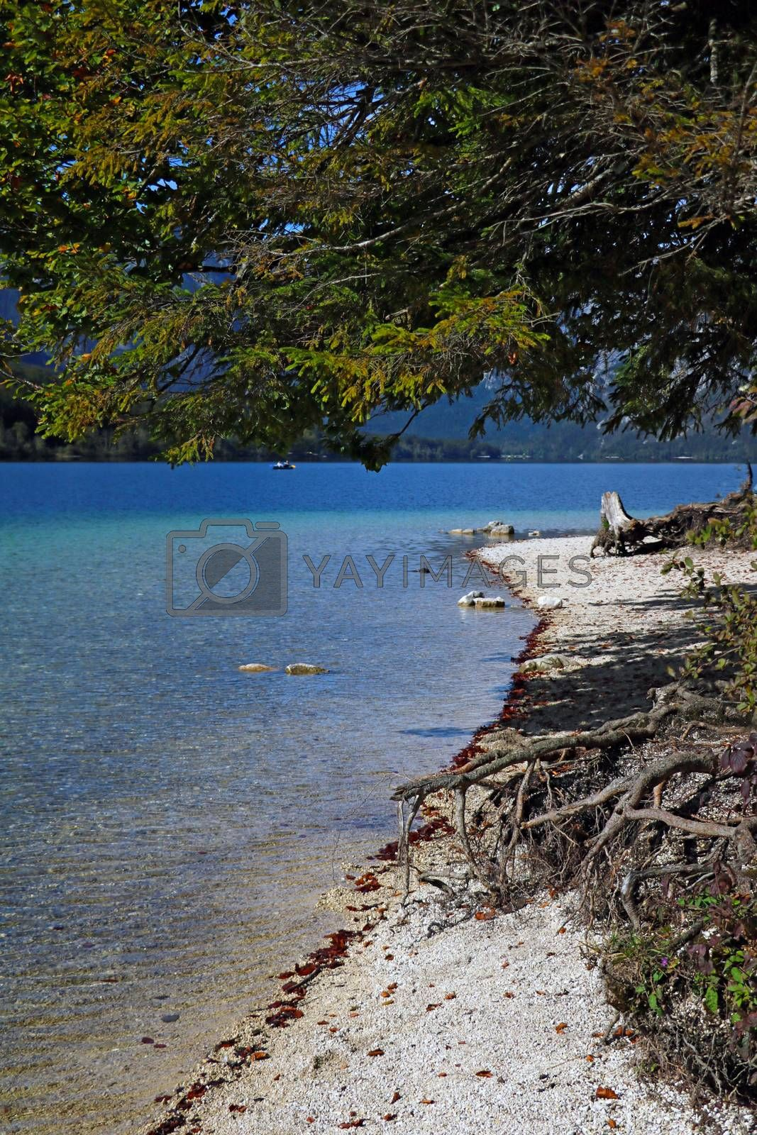 Shore of a mountain lake with turquoise water. by kip02kas