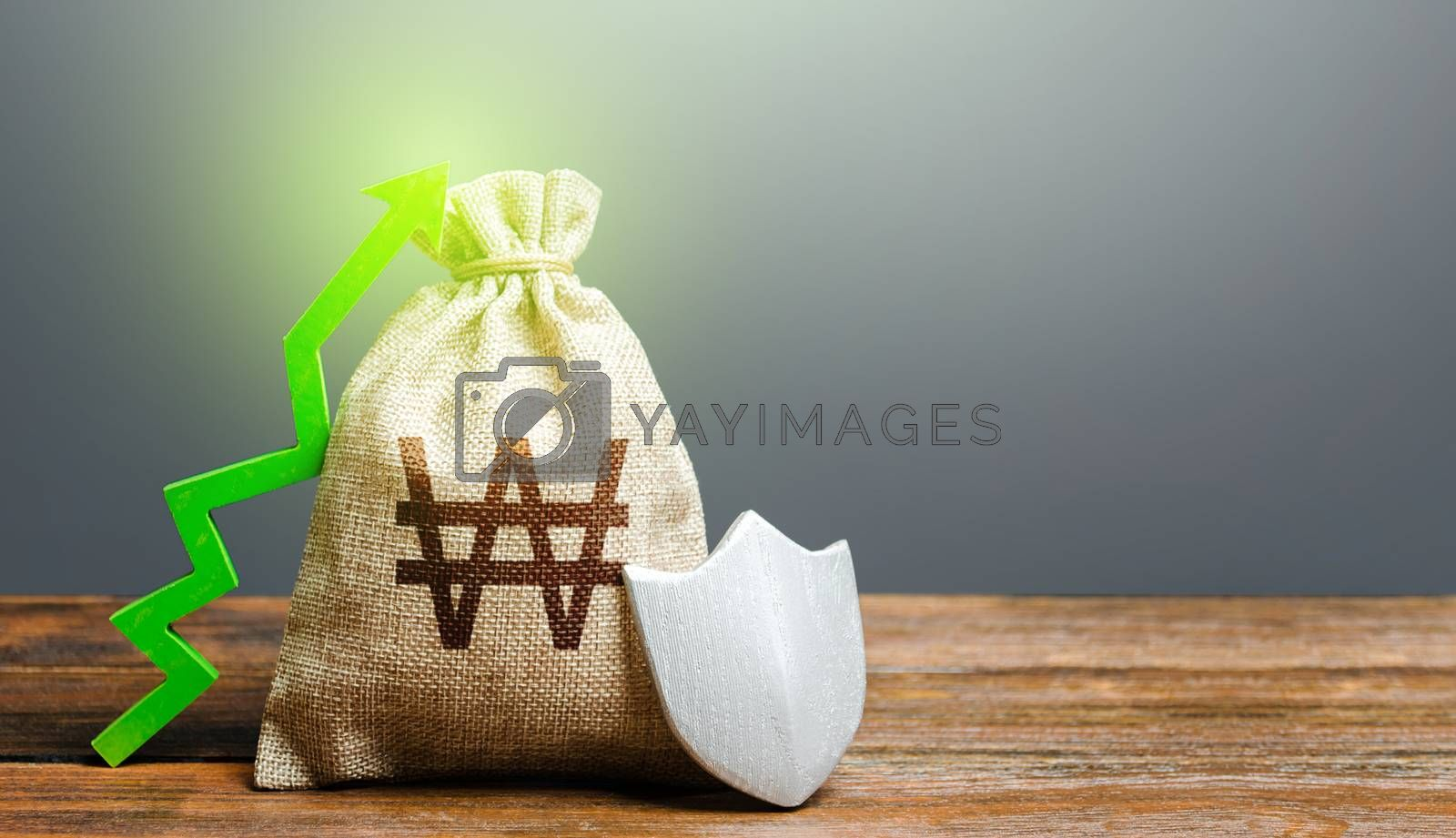 South korean won money bag with a shield and a green arrow up. Safety security of investments, financial system stability. Increasing the maximum amount of guaranteed deposits insurance compensation.