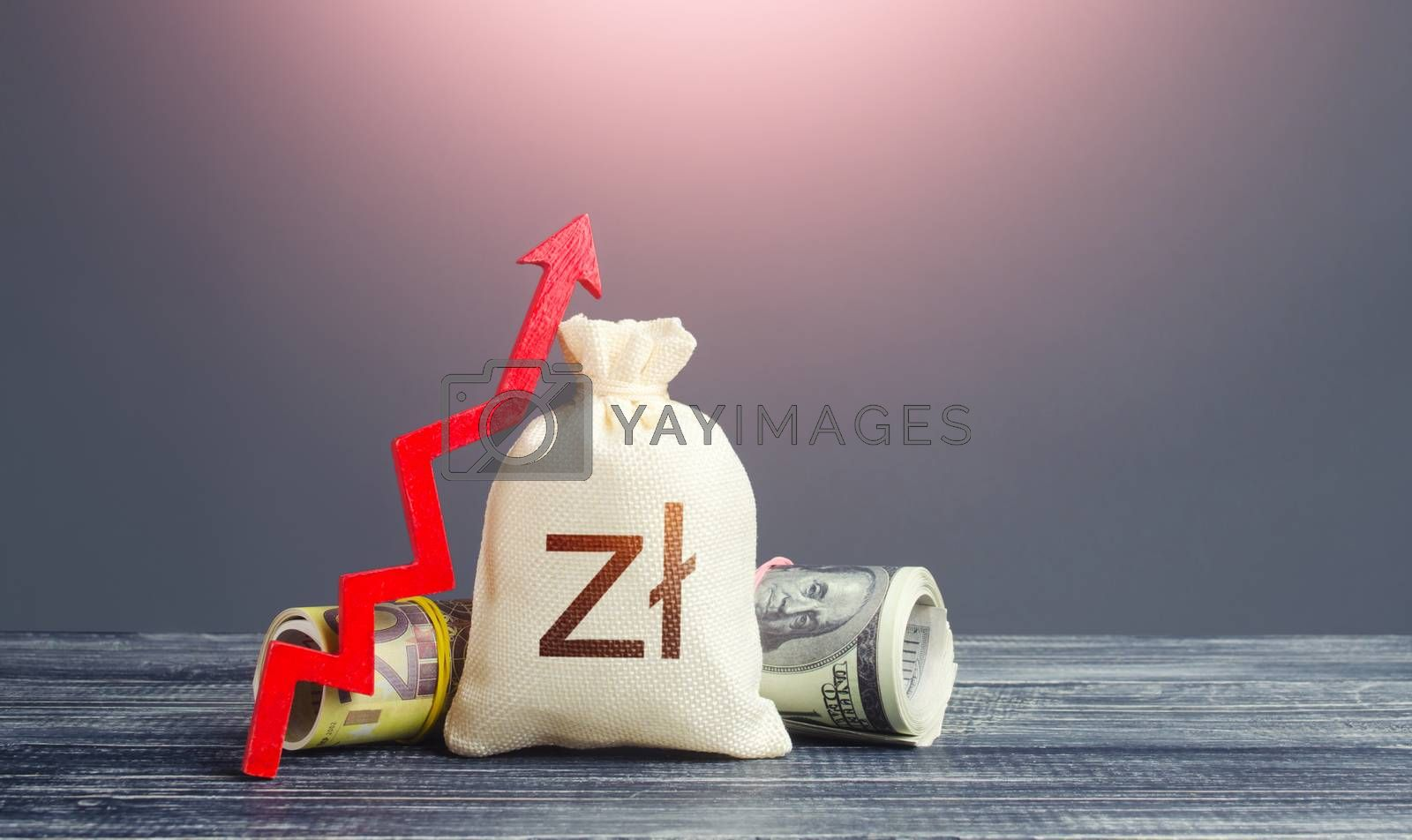 Polish zloty money bag and red arrow up. Growth of economy and increase of investment attractiveness. Rising inflation, money supply. Recovery. Stable currency. Developing markets. Reserve fund