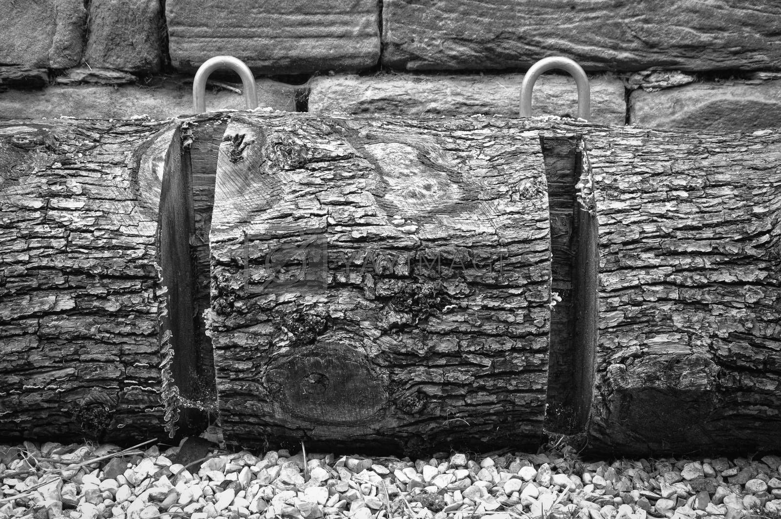 Black and white image of an environmentally friendly bicycle rack made from a tree truck.