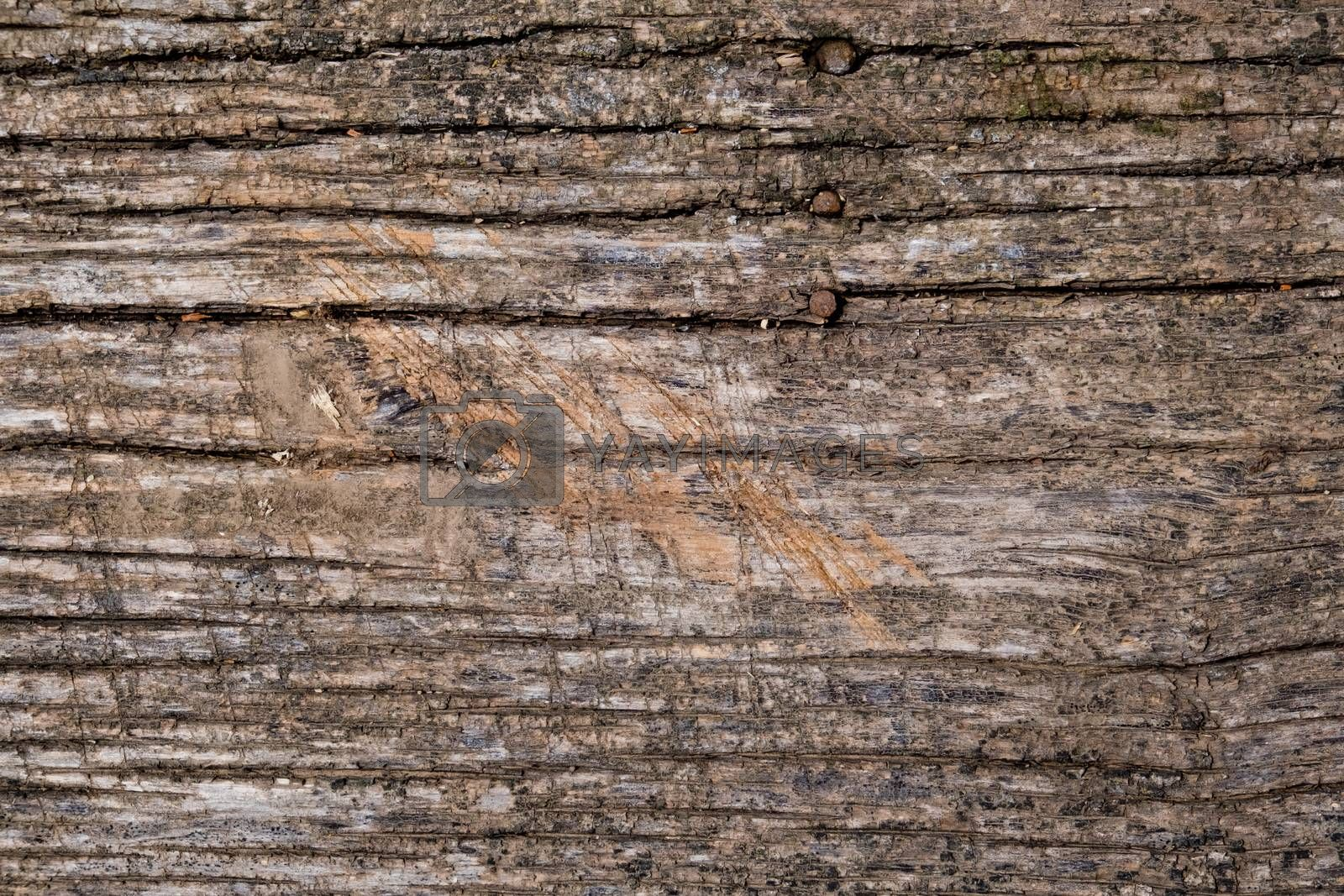 Old natural wood background.