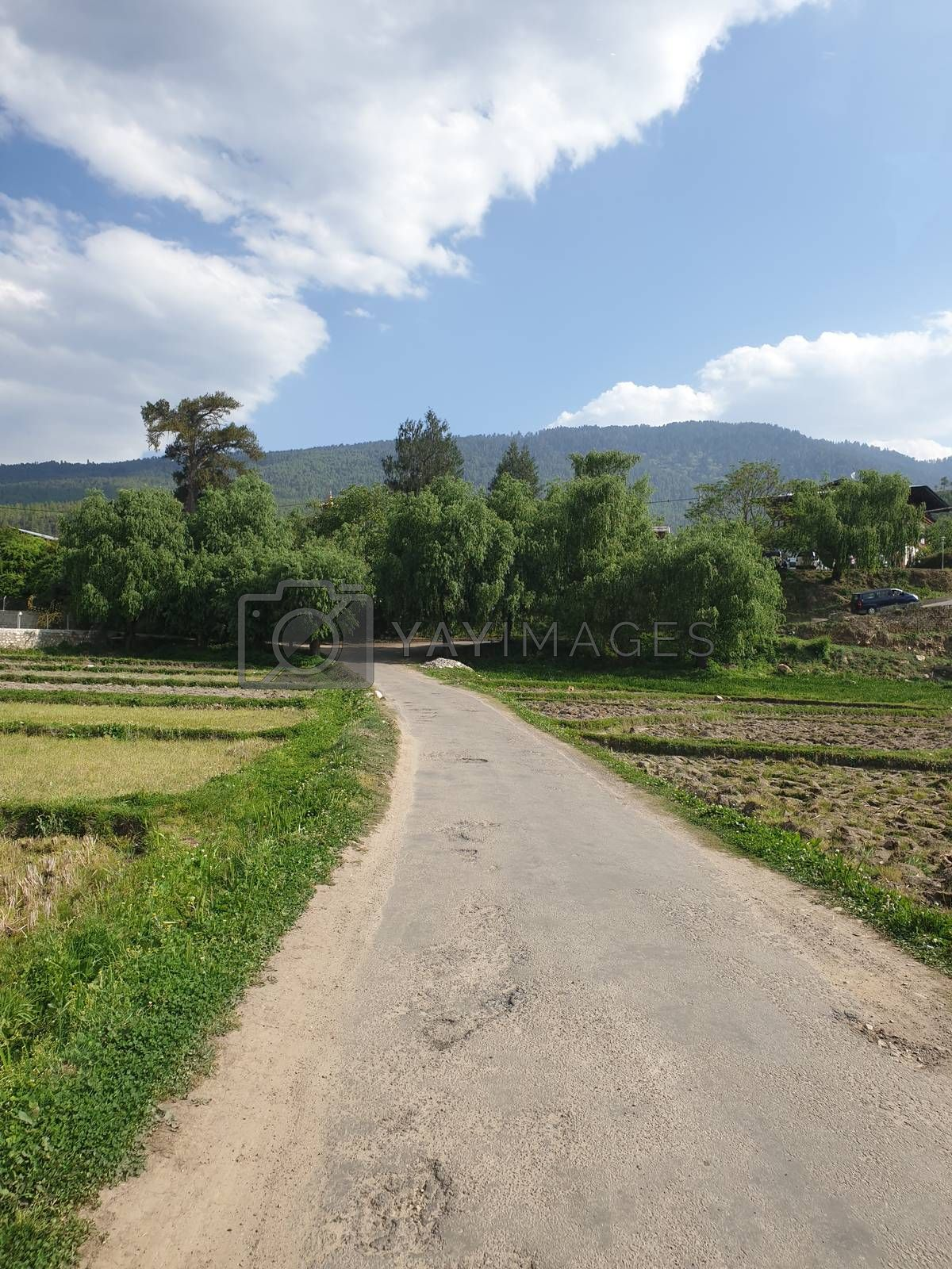 Countryside Road in Himalays by thefinalmiracle