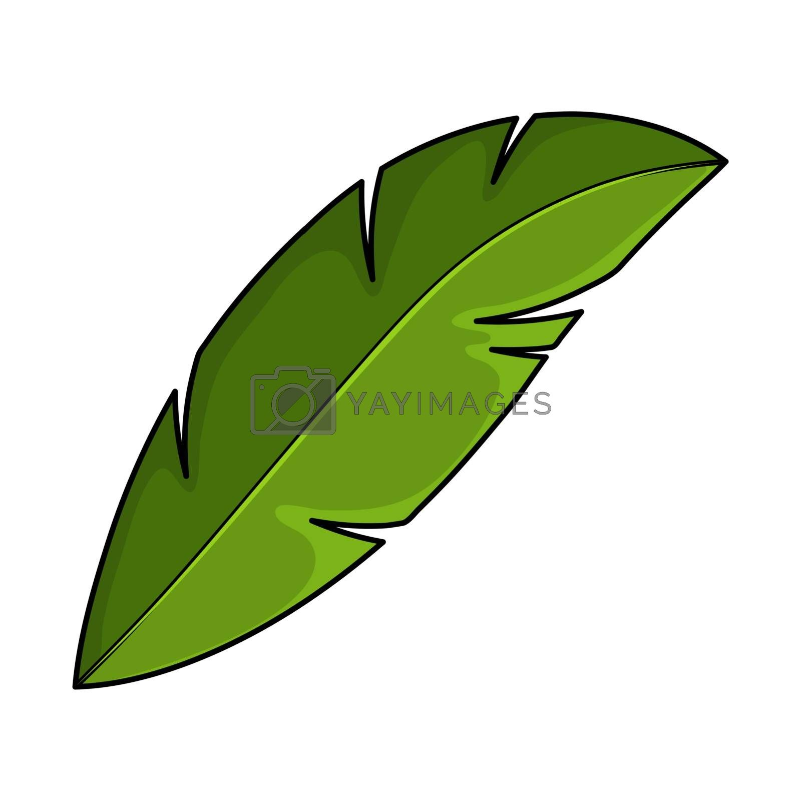 Coco palm foliage isolated on white. Single cartoon exotic frond. Part of tropical palm tree. Green coconut or banana leaf symbol or icon. Summertime simple leafage of jungle tree.
