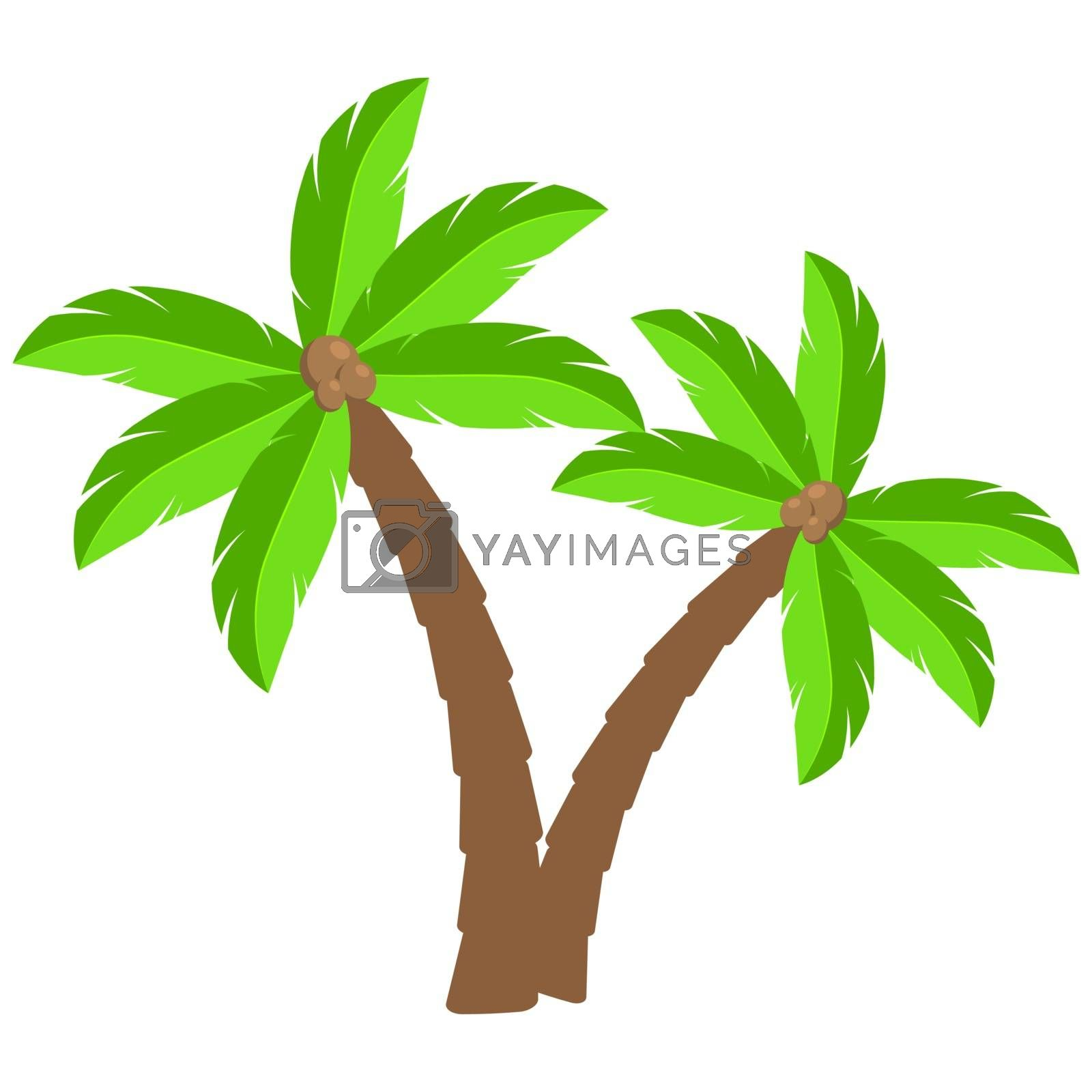 Tropical palm trees cartoon illustration.Two curved coco palm isolated on white.  Exotic palmtree illustration. Paradise plants symbol clipart.Design element for vacations leaflet or advert.