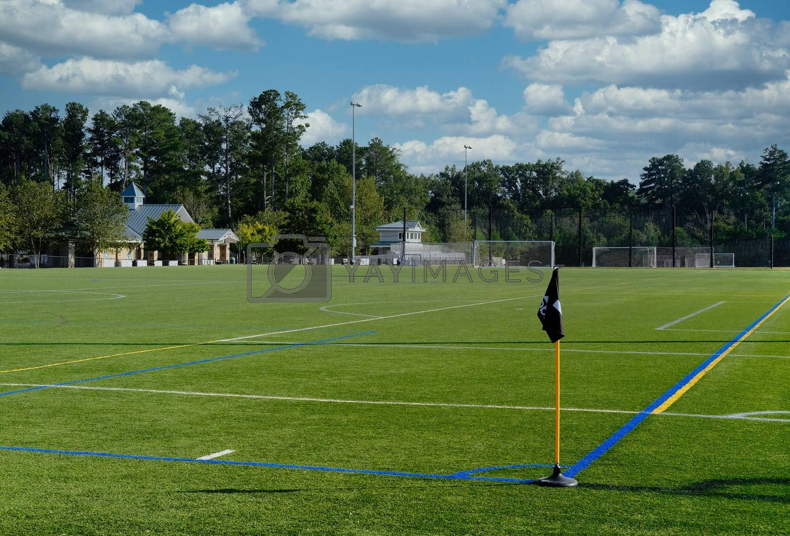 Freshly Marked Soccer Field with Green Grass