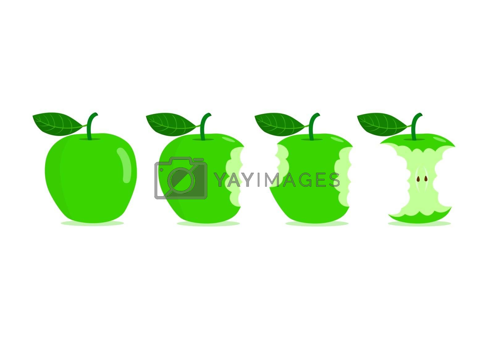 Green apples with bite marks isolated on white background. Bite marks on green apples.