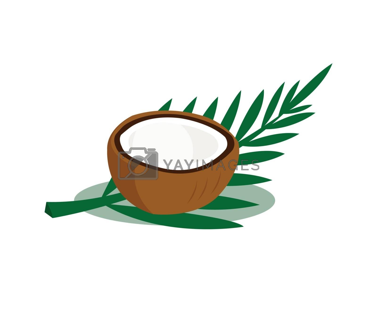 Brown coconut with leaves isolated on white background.