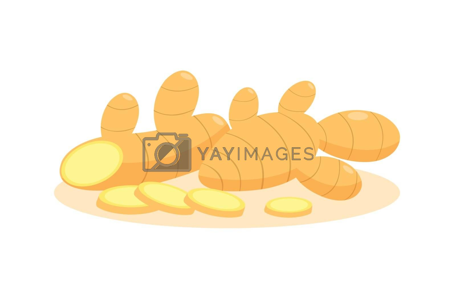 Ginger and sliced ginger isolated on white background.
