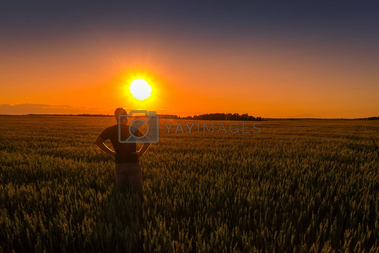A man with folded hands at the waist against the background of sunset or dawn in a rye field. The concept of success, happiness, active lifestyle and outdoor recreation.