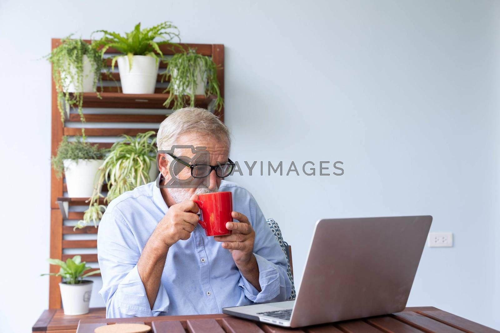 Senior retirement man is working with his laptop at home with a cup of coffee