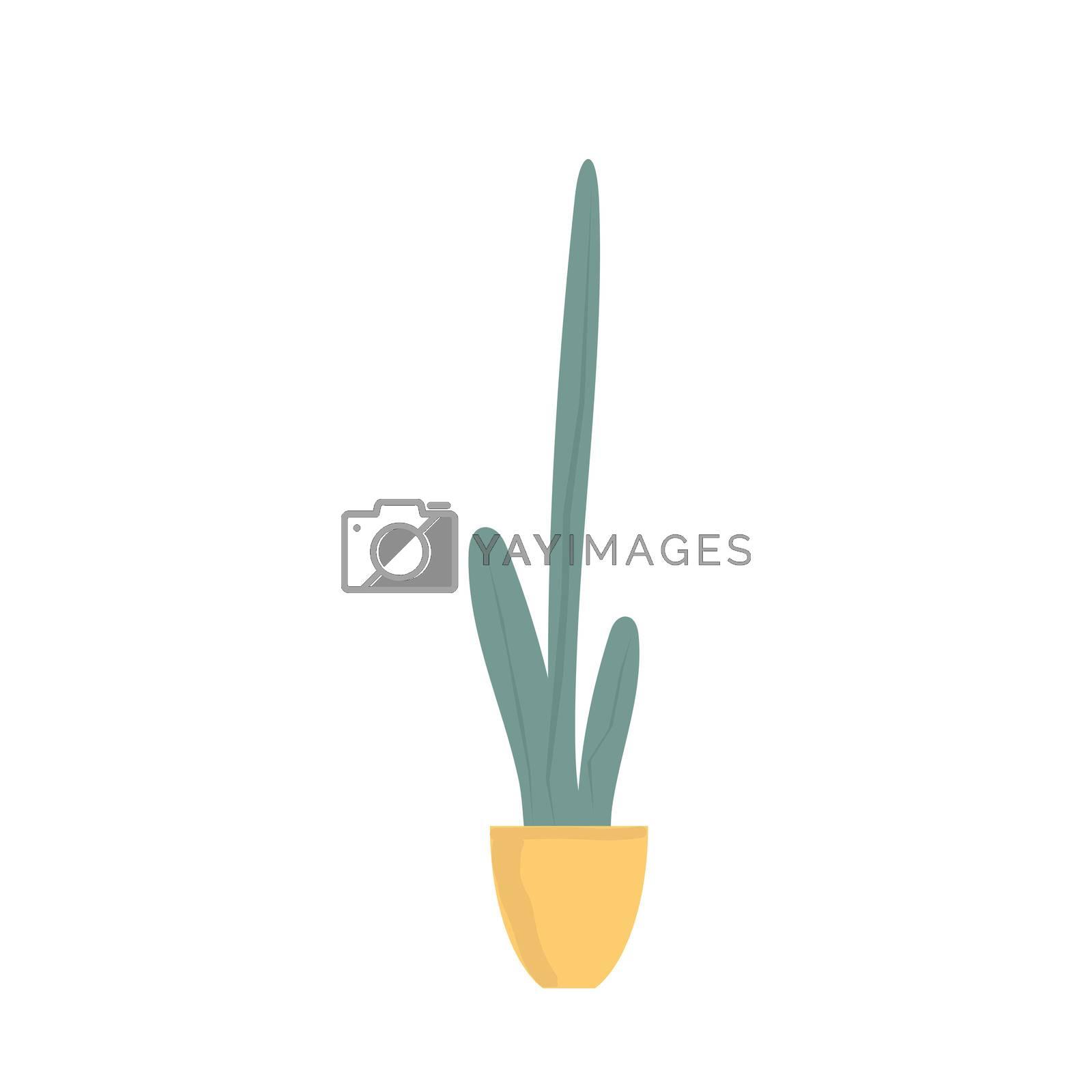 Houseplant in ceramic pot flat illustration. Evergreen plant isolated on white background.