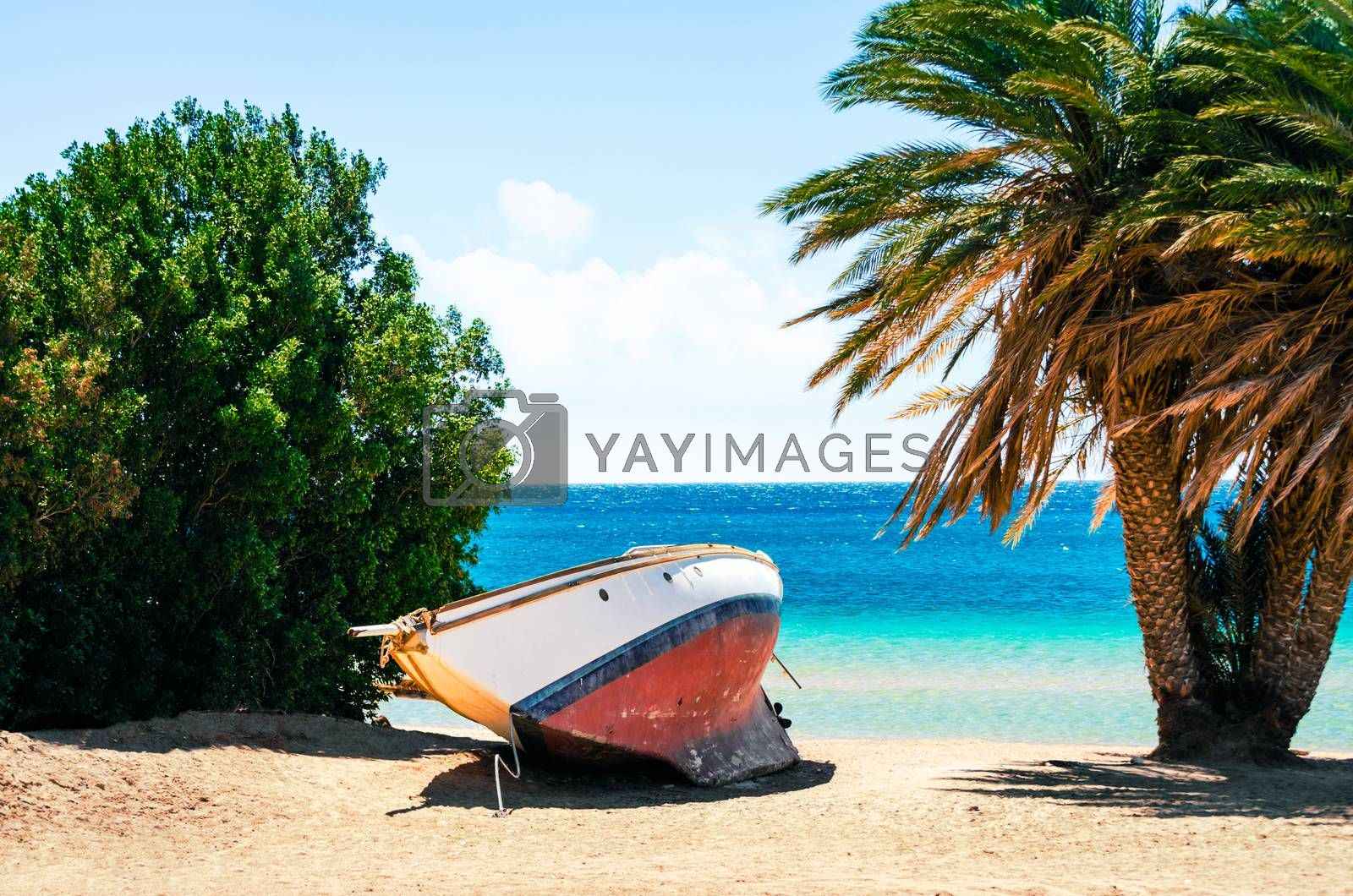 beach with old yacht and Red Sea palm tree resort Egypt without people during quarantine