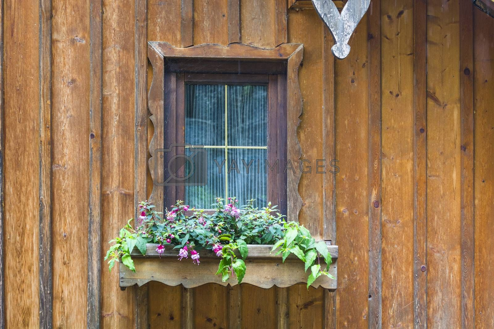 Typical window of a house in a small town in Austria. Home in the Austrian city of Hallstatt on a rainy day.