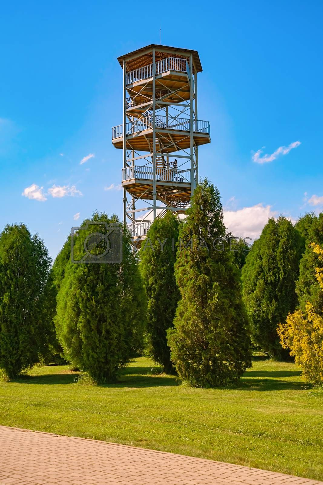 An observation tower in the arboretum