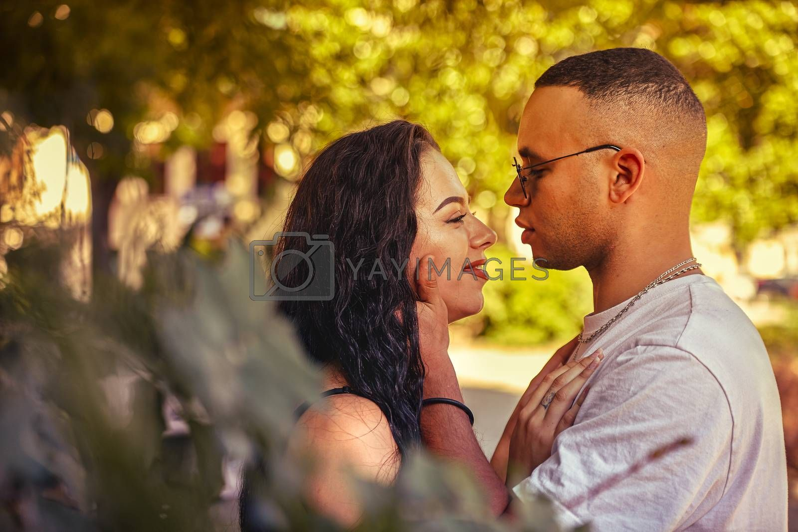 Close-up of a couple of young lovers surrounded by nature at sunset