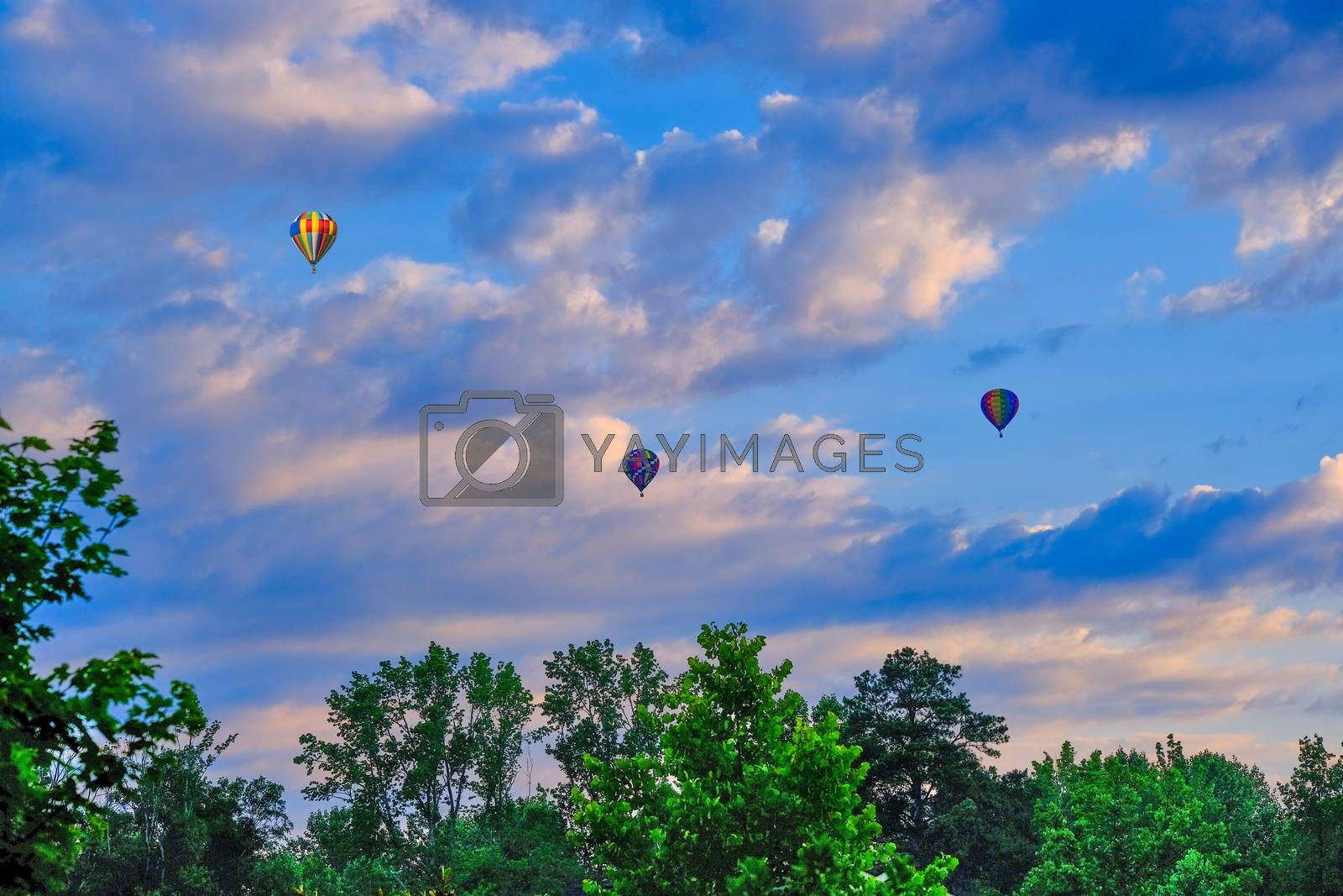 Colorful hot air balloons floating in a nice sky over green trees