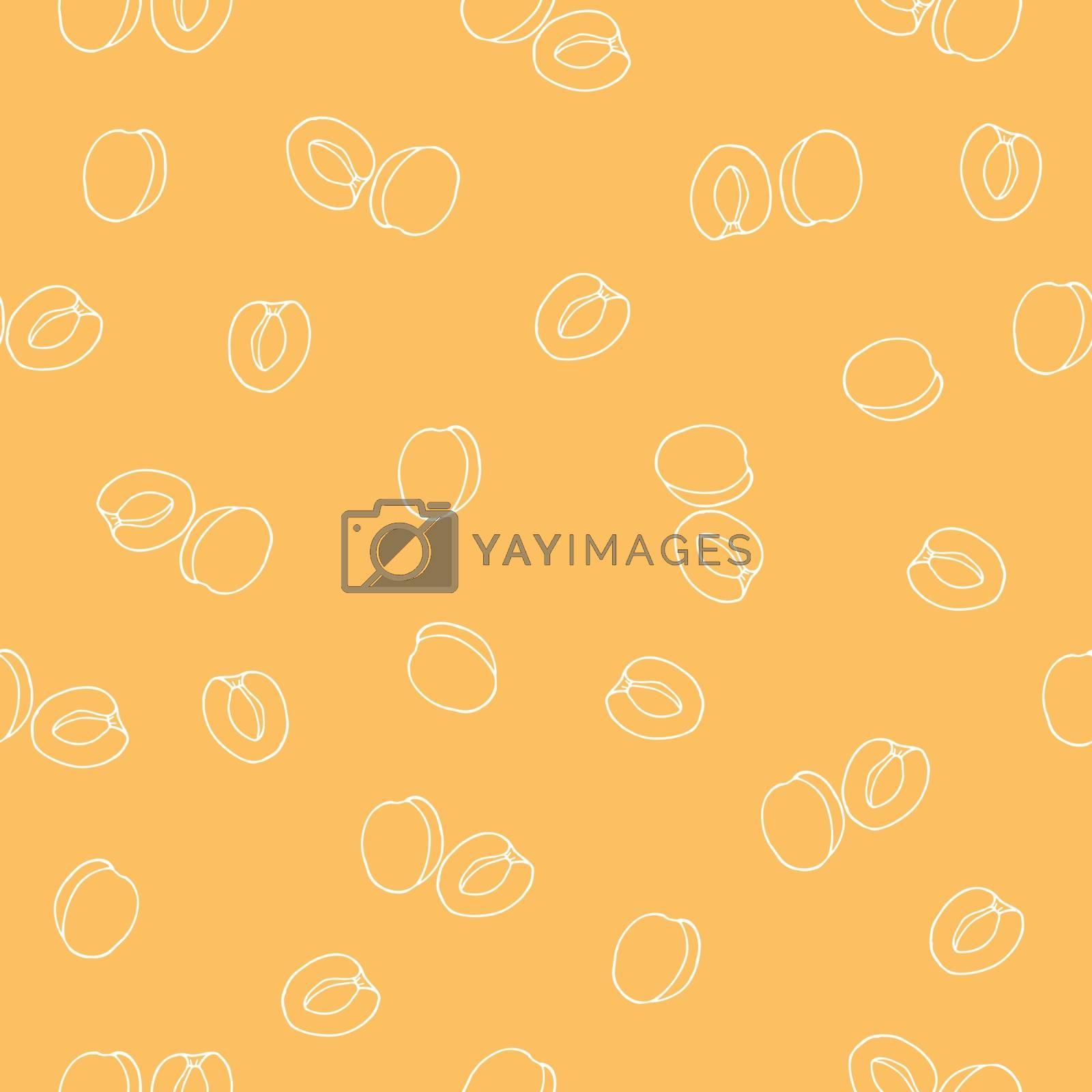 Seamless apricot pattern. Vector illustration.