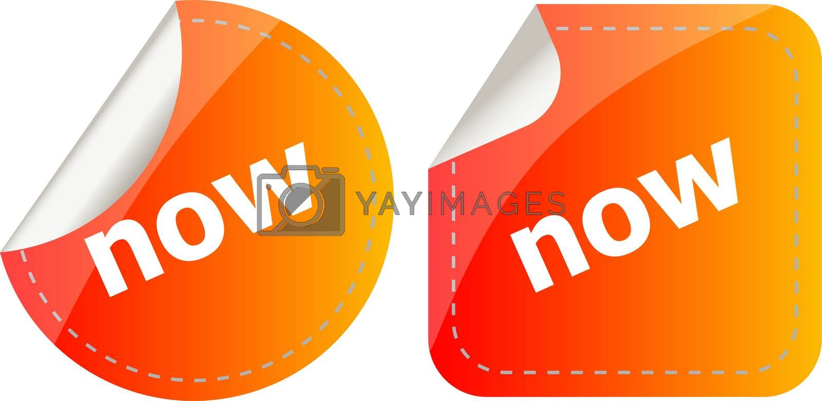 now word stickers set, icon button, business concept