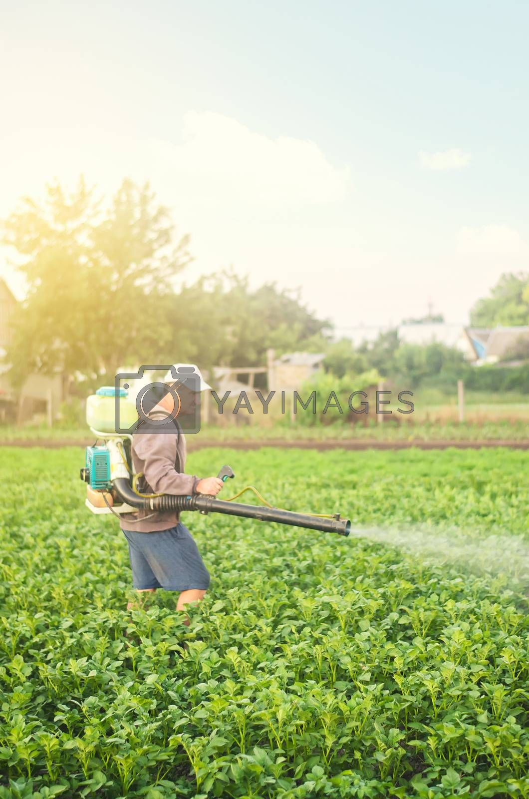 A farmer with a mist sprayer spray treats the potato plantation from pests and fungus infection. Harvest processing. Protection and care. Agriculture and agribusiness. Use chemicals in agriculture. by iLixe48