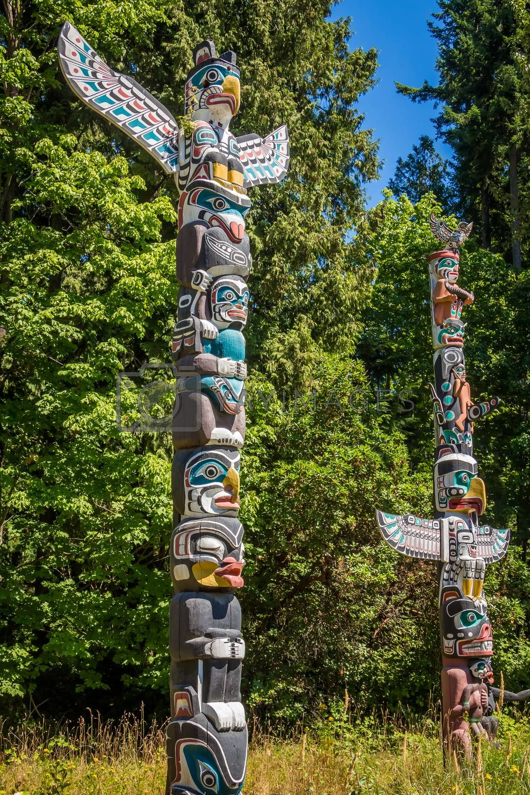 Vancouver, Canada - July 27th 2017: Totem Poles in Stanley Park in Vancouver on a summers day, British Columbia, Canada