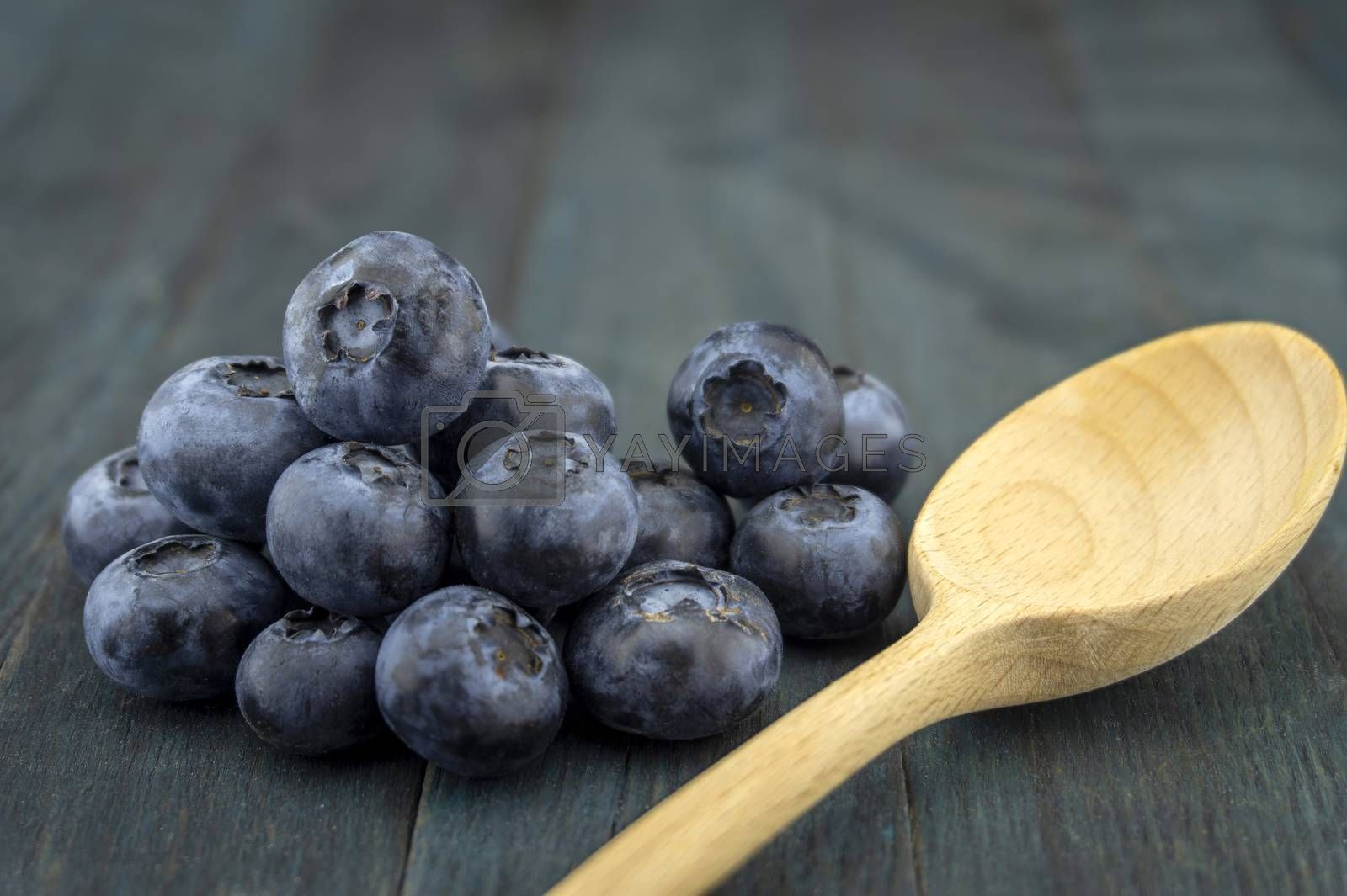 Bunch of fresh blueberries and wooden spoon on blue rustic board, low angle selective focus and free copy space for text