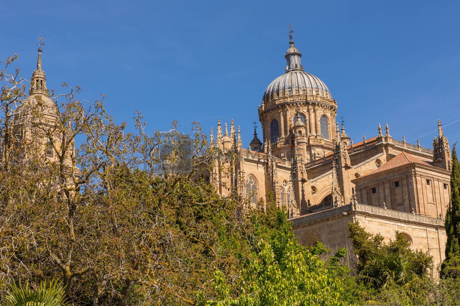 View of the historical Salamanca Cathedral, Spain